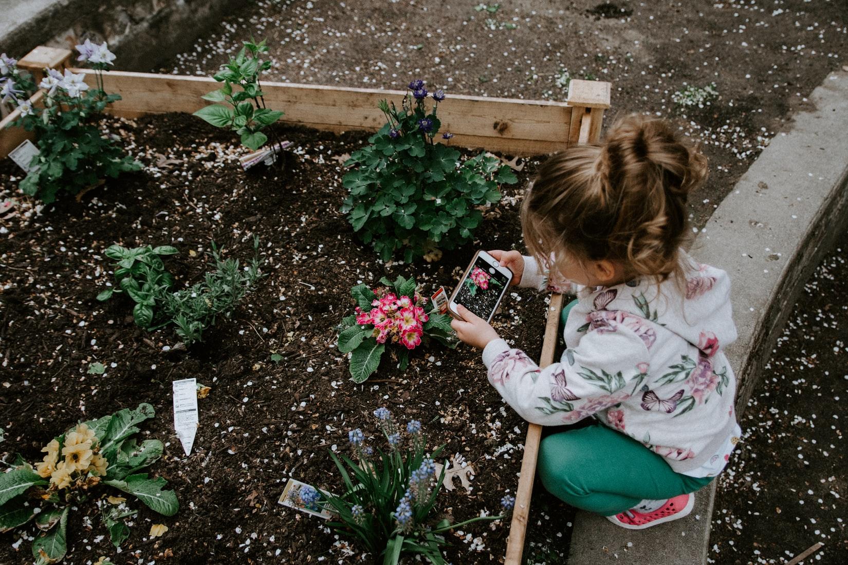 Bewoners verleiden tot natuurinclusieve tuin is niet 1-2-3 voor elkaar